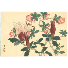 Ogata Korin After: Magnolia and Japanese Quince - Artelino