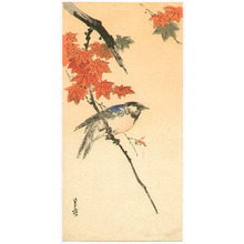 Yoshimoto Gesso: Blue Bird on Maple Branch - Artelino