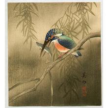 Hirose Biho: Kingfisher - Artelino