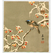 Hirose Biho: Bird on Snow Covered Berry Branch - Artelino