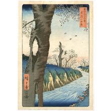 Utagawa Hiroshige: Koganei - Fuji Sanjurokkei - Artelino