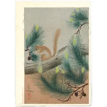 Ono Bakufu: Squirrel - Artelino