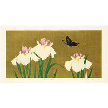 Okamoto Ryusei: Iris - Artelino