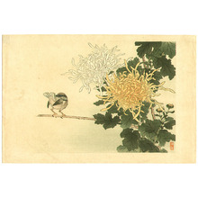 幸野楳嶺: Bird and Flowers - Artelino