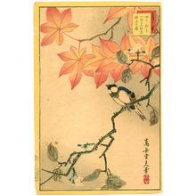 Nakayama Sugakudo: Bird and Maple - Artelino