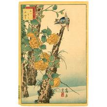 Nakayama Sugakudo: Kingfisher and Globe-flower - Artelino