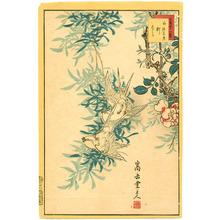 Nakayama Sugakudo: White Sparrows - Artelino