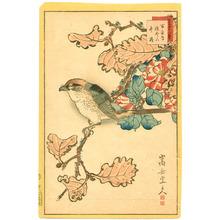 Nakayama Sugakudo: Bird and Flowers - Artelino