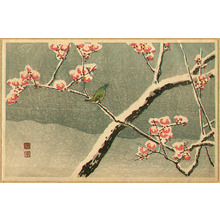 Takahashi Hiroaki: Bush Warbler and Snowy Plum Tree - Artelino