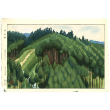 Yamamoto Koun: Cedar Forest at Kitayama - Artelino