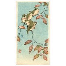 Ohara Koson: Five Small Birds Perch on Acorn Tree - Artelino