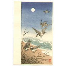 小原古邨: Birds Landing on a Seashore - Artelino