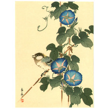 Imao Keinen: Bird and Blue Morning Glories - Artelino