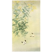 無款: Butterflies and Yellow Flower - Artelino