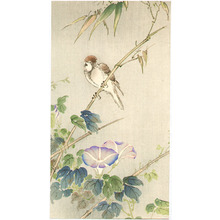 Unknown: Sparrow and Morning Glories - Artelino