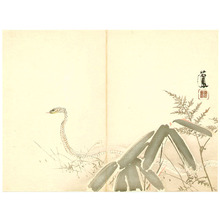 Takeuchi Seiho: Snake - Artelino