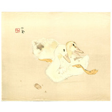 Takeuchi Seiho: Two Baby Ducks - Artelino