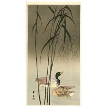 山本昇雲: Mallard Ducks - Artelino