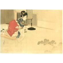 Mizuno Toshikata: Looking at Shadow - Artelino