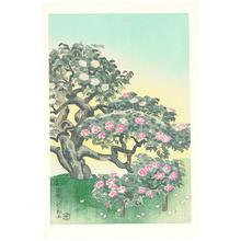 Ito Nisaburo: Five-Colored Camellia - Artelino