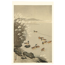 Ohara Koson: Pond in Late Autumn - Artelino