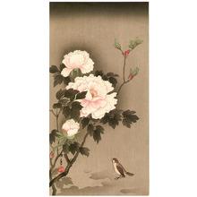 今尾景年: Sparrow and Peonies - Artelino