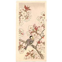 Jo: Bird on Cherry Branch - Artelino