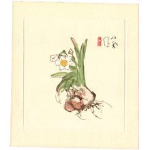 Takeuchi Seiho: White Daffodil - Artelino