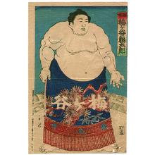 Unknown: Champion Sumo Wrestler Umegatani - Artelino