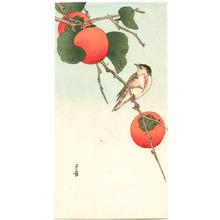 Yoshimoto Gesso: Bird and Persimmons - Artelino
