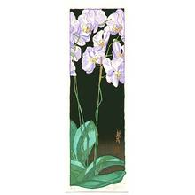 Paul Binnie: Orchid Night - Artelino