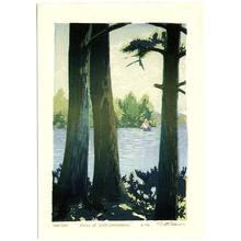 Brown Matt: Pines of Winnipesaukee - Artelino