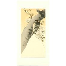 Yoshimoto Gesso: Woodpecker on Cherry - Artelino