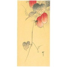 Kawanabe Gyosui: Bee and Red Fruits - Artelino