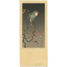 Watanabe Seitei: Blue Birds at Night - Artelino