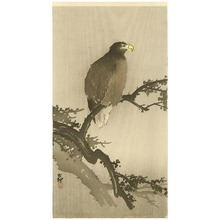 Ohara Koson: Eagle on Tree - Artelino