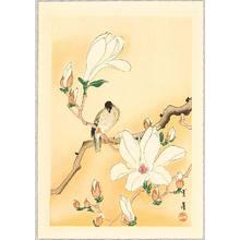 Watanabe Seitei: Bird on Magnolia - Artelino