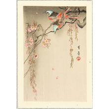 Watanabe Seitei: Two Birds on Cherry - Artelino