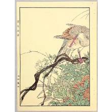 今尾景年: Nest of Mountain Pigeon - Keinen Gafu - Artelino