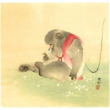 Ohara Koson: Monkey and Bee - Artelino