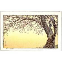 Yoshida Toshi: Cherry Blossoms - Artelino