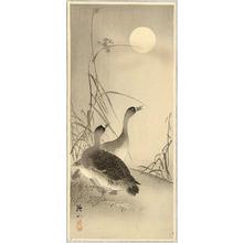 Ito Sozan: Two Geese and the Moon - Artelino