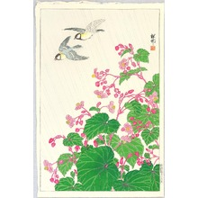 小原古邨: Two Birds and Begonia in Rain - Artelino