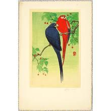 Ohara Koson: Two Macaws - Artelino