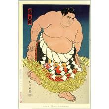 Kinoshita Daimon: Champion Sumo Wrestler Akebono - Artelino