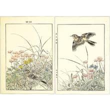 Imao Keinen: Pair of Birds - Keinen Gafu - Artelino
