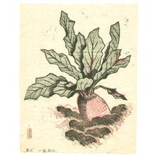 Hiratsuka Unichi: The Poems and the Prints - Red Turnip - Artelino
