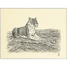 吉田遠志: Lioness A - Artelino