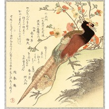 Kubo Shumman: Two Pheasants and Plum - Artelino