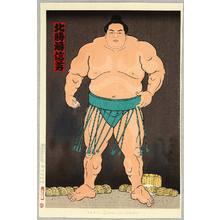 Kinoshita Daimon: Champion Sumo Wrestler Hokutoumi - Artelino